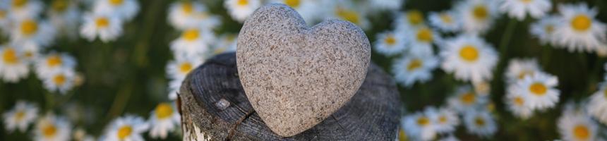 Hart en ster stenen