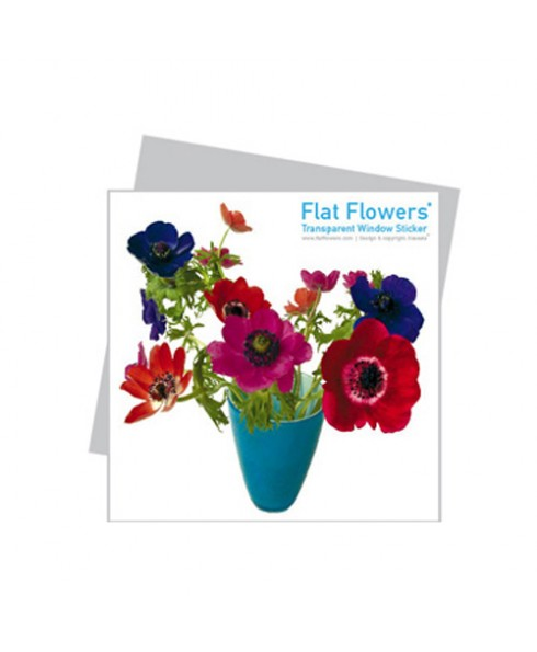 Flatflower 4