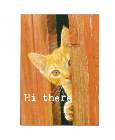 Postkaart Hi there