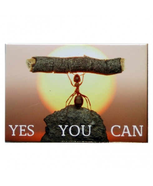 Magneet Yes you can