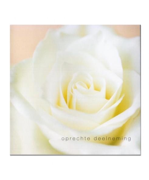 pure kaart met tekst in een witte roos