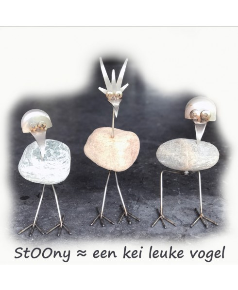 StOOny vogel kei