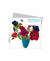 Flatflower 4