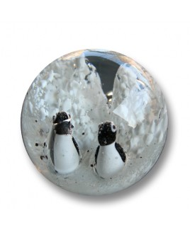 Droomkogel pinguins