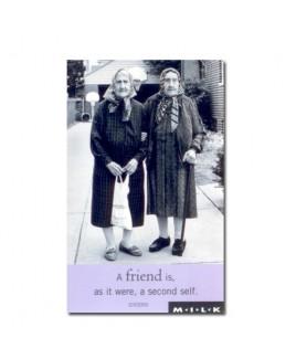 A friend is, as it were, a second self.