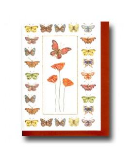 Vlinders en klaprozen.