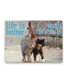 Magneet Friends